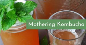 How to mother kumbucha