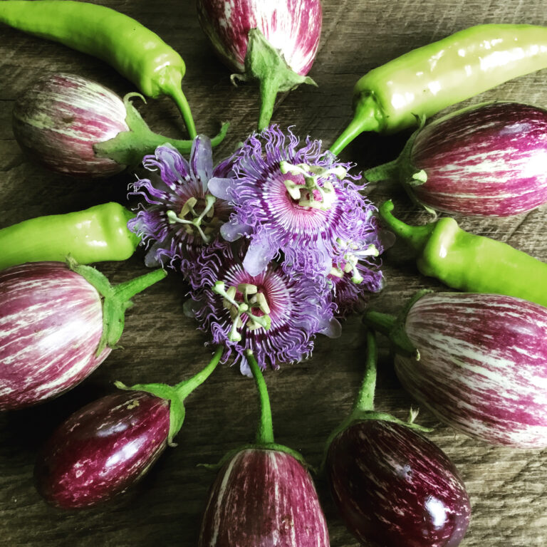 eggplants and passion flowers