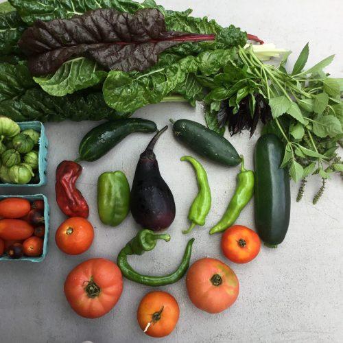 produce in Sustainabillies summer CSA box